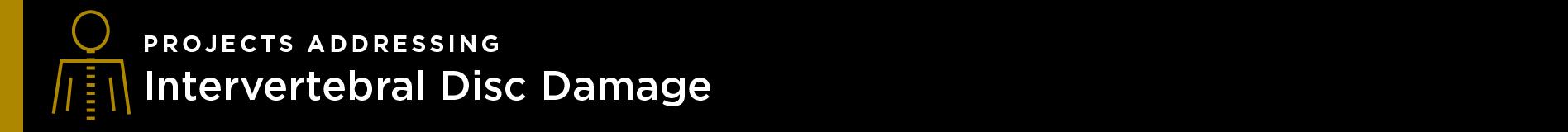 nsbri-smartcap-risk-disc